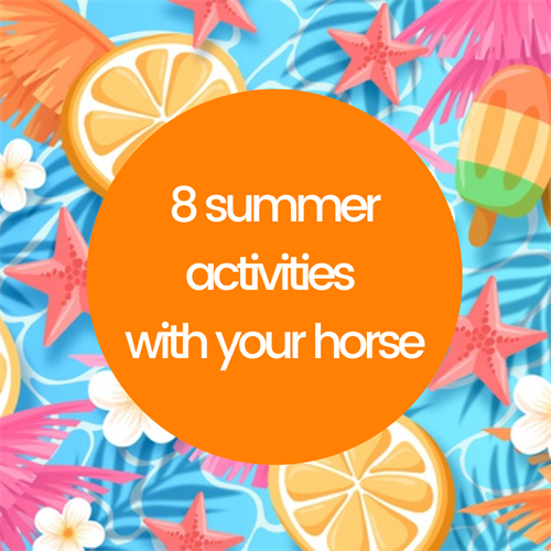 8 summer activites with your horse