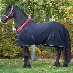 Cooler QHP Friesian