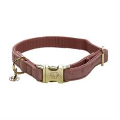 Dog Collar Kentucky Velvet