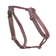 Dog Harness Kentucky