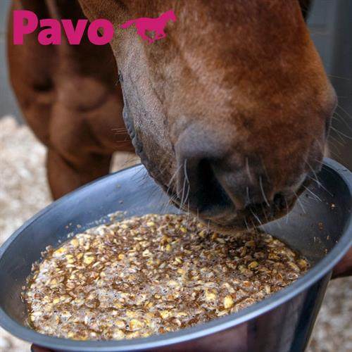 Everything you need to know about Pavo SlobberMash