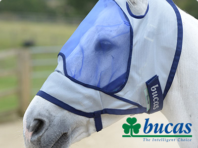 Guest blog Bucas: the ins and outs of fly masks