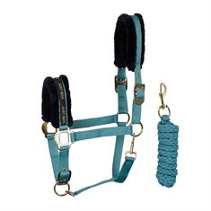 Halter and Lead Rope Harry's Horse Just Ride Ocean