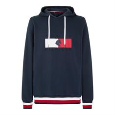 Hoodie Tommy Hilfiger Statement Men