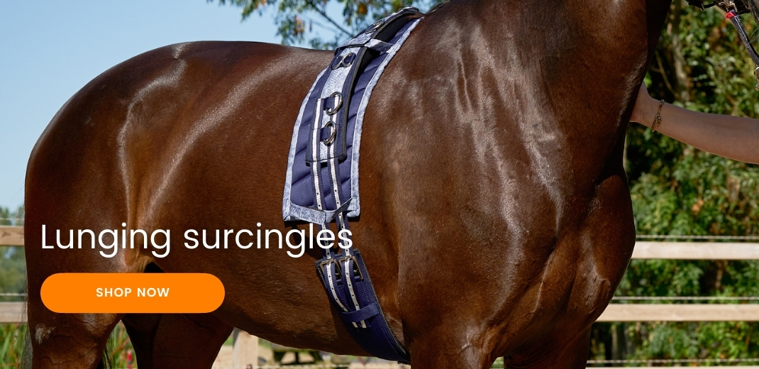 Lunging surcingles