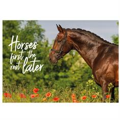 Postcard Horses First