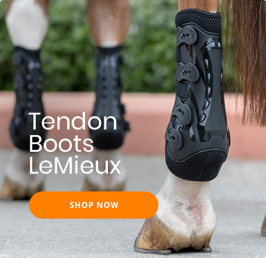 Tendon Boots LeMieux